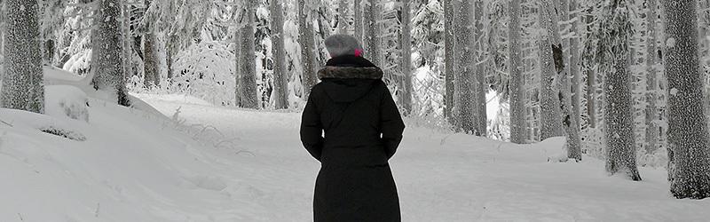winterreise-800x250px
